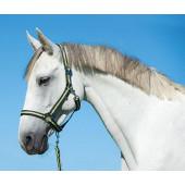 Недоуздок 'Hippo' рр COB антрацитово/лимонный для лошадей
