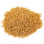 Горчица желтая весом, 200-500г на сотку